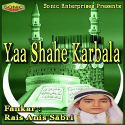 Rais anis sabri new mp3 song mere tan rang diya download raag. Fm.