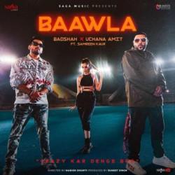 Unknown Baawla