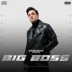 Unknown Big Boss